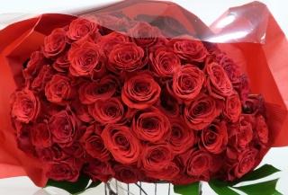 【ヴォルンタ】 大輪赤バラ60本の花束