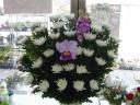 葬儀用生花(菊花)
