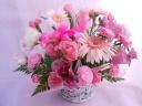 ふんわりピンクが素敵な「プレミアム・ピンク」