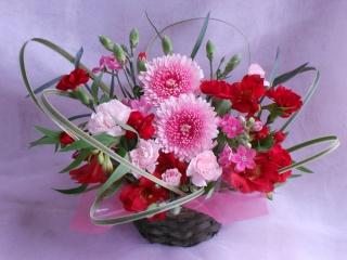 季節の可愛いアレンジメント「ピンク・トルマリン」
