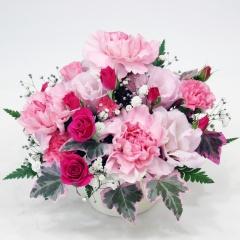 ペットの供花 ビーンズポット・プリティピンク