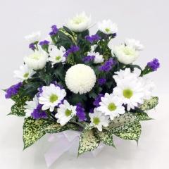 供花 菊とスターチースのお供えアレンジメント