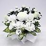 供花 菊とトルコキキョウのホワイトお供え花