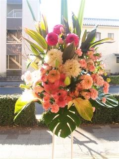 お急ぎのご注文OK!華やかなピンク系スタンド花