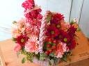 「Flower&Bear」