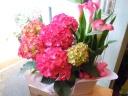 お花のギフト「紫陽花&カラー」