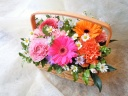 お花の贈り物「カラフルピクニック」