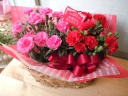 母の日ギフト「咲くのが楽しみカーネーション」