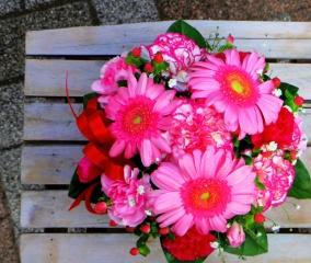 MA1 pink arrange