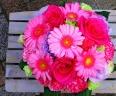 MA3 pink arrange