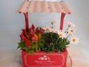 ウッドプランター&花鉢