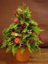フレッシュクリスマスツリー(赤)