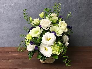 白と緑のとるこききょうに紫小花を添えて