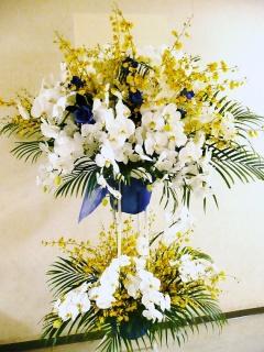 青バラと胡蝶蘭の爽やかスタンド