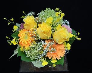 黄色いバラの素敵なハーモニー