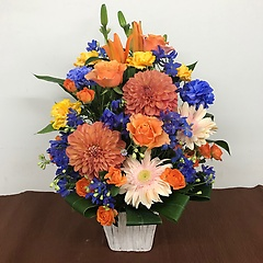 青とオレンジのアレンジメント(M)FR2630