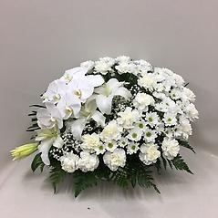【供花】スフェアアレンジメントW胡蝶蘭入 (H50)