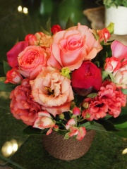 Red&Pink Roses