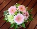 母の日「ガーベラアレンジS」ピンク
