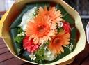 母の日「ガーベラブーケ S」オレンジ