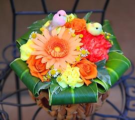 黄色と桃色の小鳥が住むオレンジガーデンS