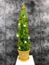 クリスマスツリー (雪だるま鉢付)