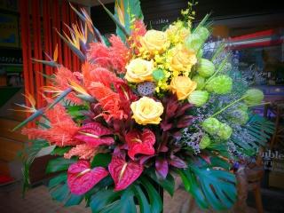 御祝いスタンド花 オリエンタルビビッド