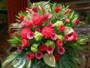 御祝いスタンド花 レッドモンブラン
