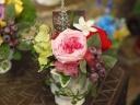 コロンと可愛いカップ咲きローズ~ピンク~