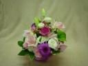 ピンクの花は可愛いね!!