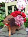 可愛い♪~「ワンちゃんがお花をお届けします!」