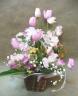 チューリップや春のお花が クマと楽しいハミング♪