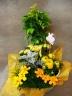 元気の出る黄色のお花寄せ鉢 黄色の小鳥も満足