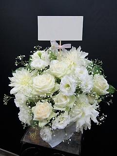 白いふわふわマシュマロアレンジメント