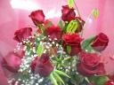 1ダース赤バラの花束