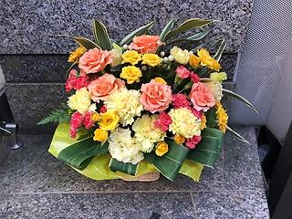 イエロー・オレンジ系70