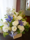 White × Blue Arrangement