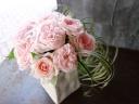 Dosen of roses / Pink