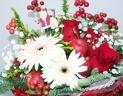 クリスマスカラーのパリスタイル