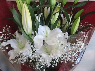 【ホワイトユリ 】花束