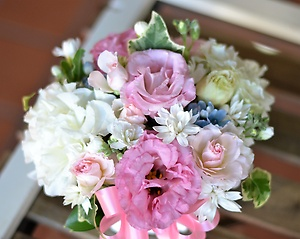 ドリームパステル:可愛いお花に感激!
