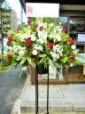 お祝い花・開店・豪華スタンド花15WRRE1
