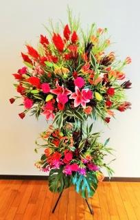 お祝い花・開店・豪華スタンド花20RERE1