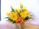 ♪春のお花畑♪