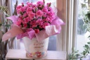 思わず『可愛いっ!』鮮やかなピンクのカーネーション