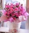鮮やかピンクのカーネーション