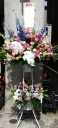 胡蝶蘭のスタンド花