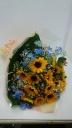 可愛い向日葵の花束