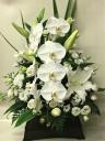 トルコキキョウと胡蝶蘭の供花台付アレンジメント