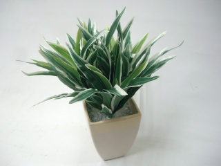 ドラセナ≪造花!観葉植物≫光触媒